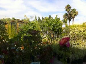 Nos points de vente bergon nature jardin for Entretien jardin frejus