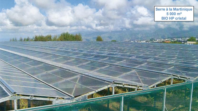Serres photovoltaïques