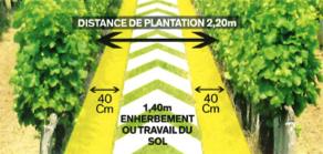 distance de plantation