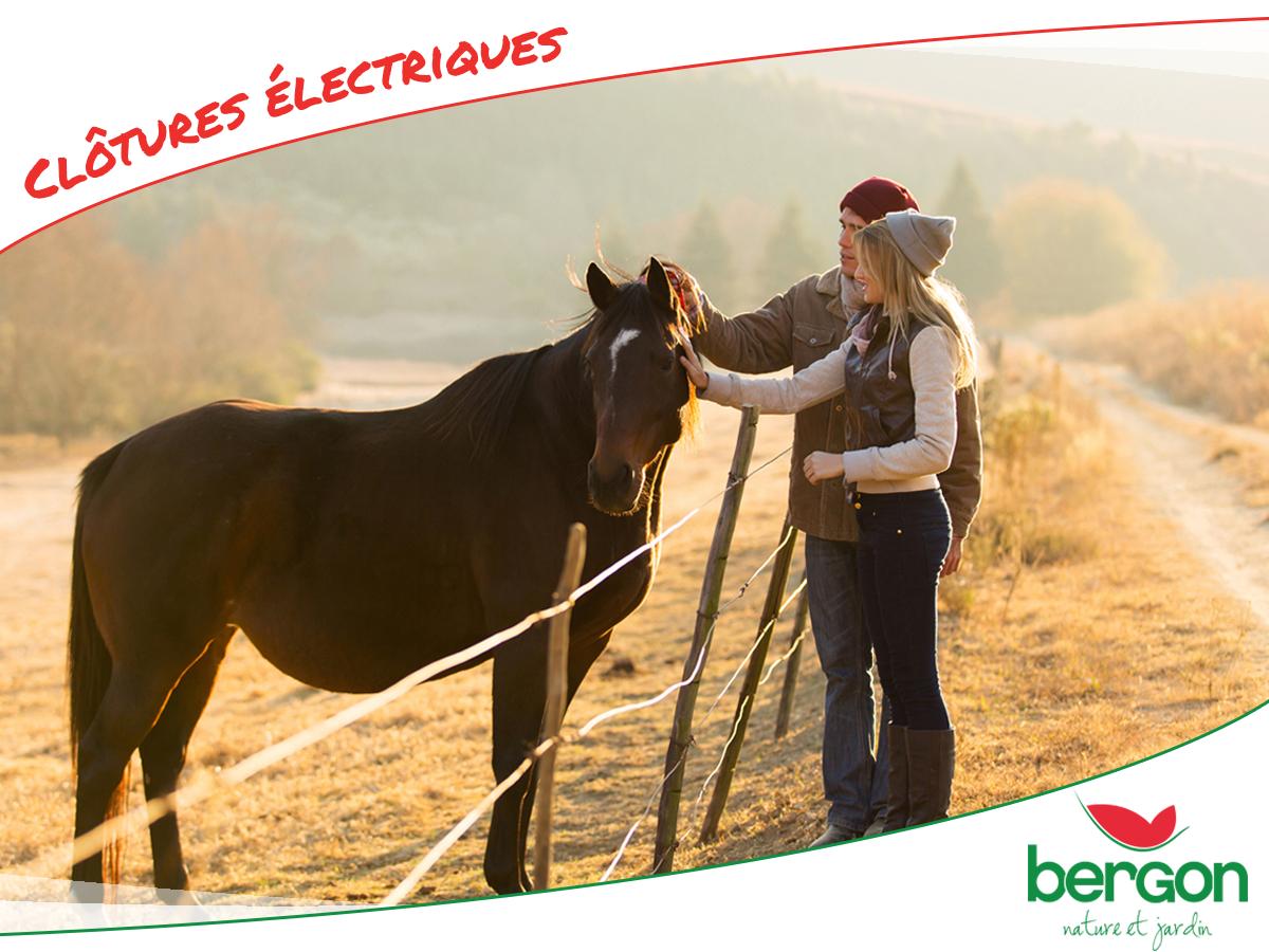 Spécialiste de la clôture électrique au meilleur prix - Bergon ...