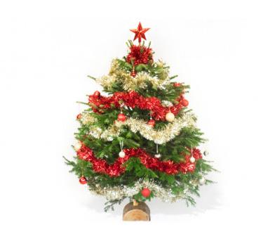 Commandes et Arrivage de Sapin de Noël