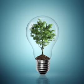 Consommer des énergies renouvelables : on vous dit tout !