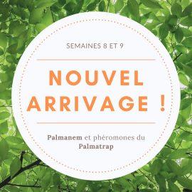 Arrivage : Palmanem et phéromones du Palmatrap